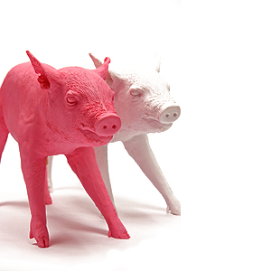pigs_lg.jpg