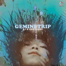 GeminiTripCover.jpg