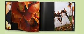 BlurbBook.jpg