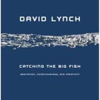 catchingbigfish.jpg