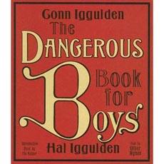 dangerboys230.jpg