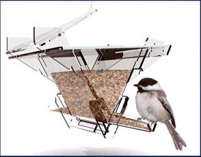 archbirdfeeder.jpg