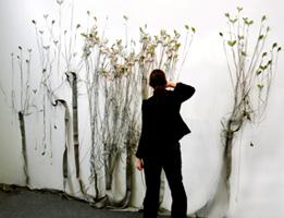 branching_systems2.jpg