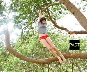 pact-1.jpg