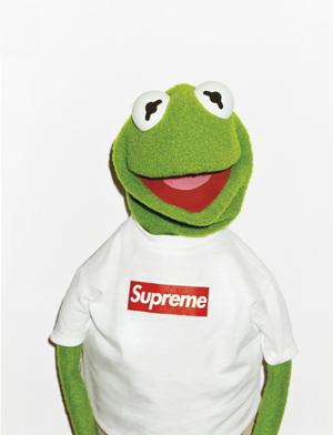 SupremeBookKermit-1.jpg