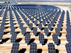 solarpanelfield.jpg