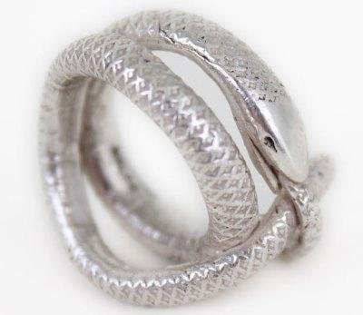 Saeter-snake-1.jpg