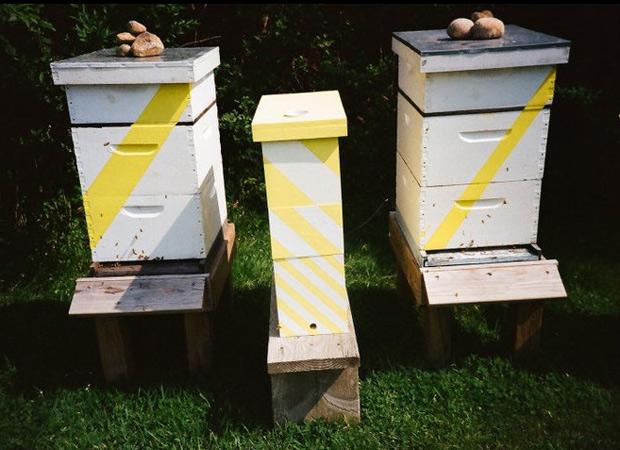 Chandelier-hives.jpg