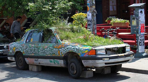 soiled-seeded-car.jpg