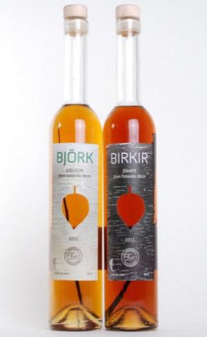 Birkir-1.jpg