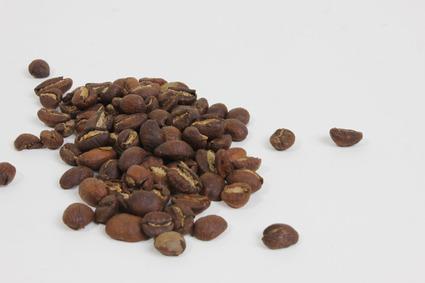 Nude-Espresso-2.jpg