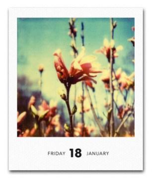 2013-Calendar-Poladarium.jpg