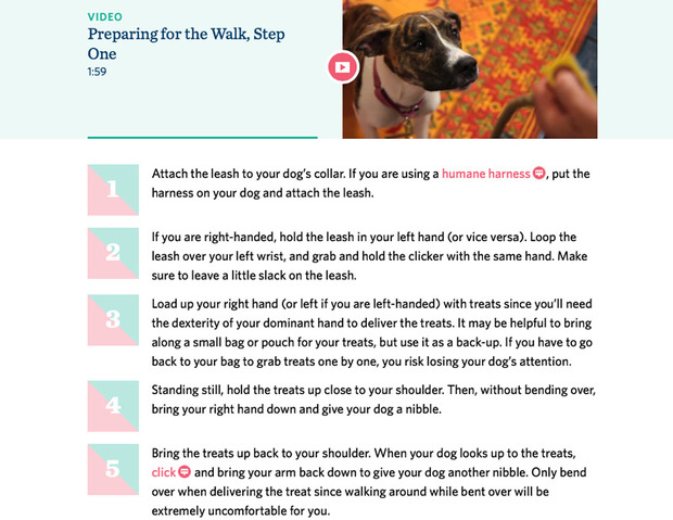 dog-training-app-4.jpg