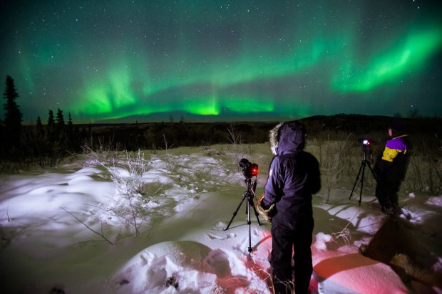 WOM-Fairbanks-lights1.jpg