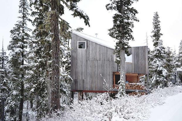 alpine-cabin-scott-scott-architects-architizer-awards.jpg