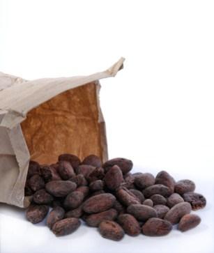 dandelion-chocolates-roasted-cocoa-beans-close2.jpg