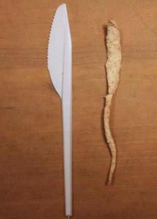 montalti-plastic-knife.jpg