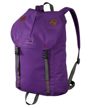 Patagonia-new-summit-pack-purple-7.jpg