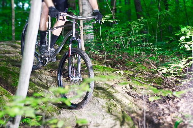 Budnitz-No2M-mountain-bike.jpg