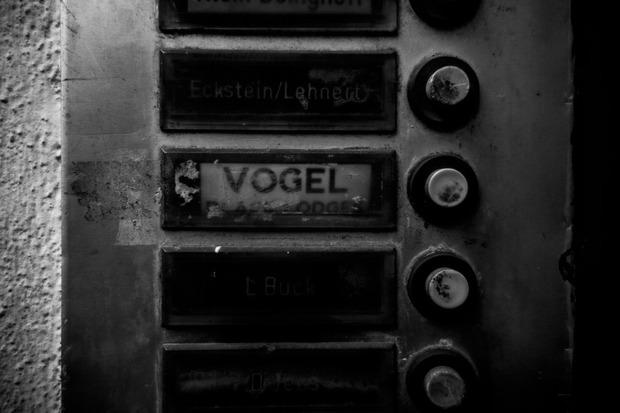 steven_vogel-7.jpg
