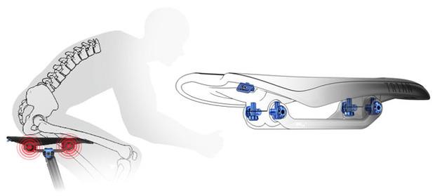 Morgaw-saddle-diagram.jpg