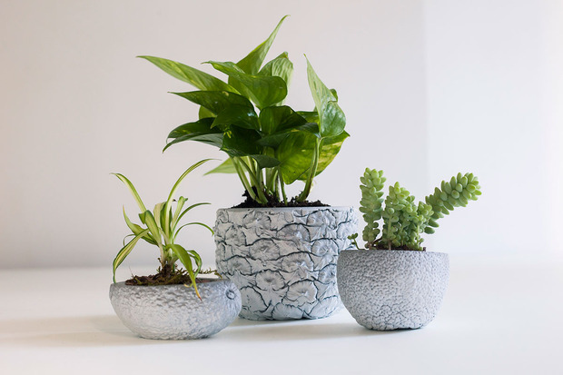 of-a-kind-chen-chen-kai-williams-planters.jpg