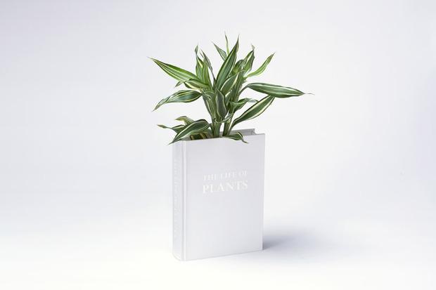 BookshelfPlanter.jpg