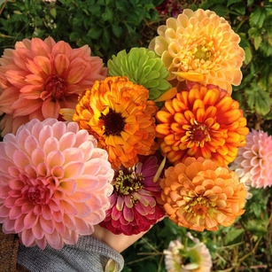 farmhand-flowers-1.jpg