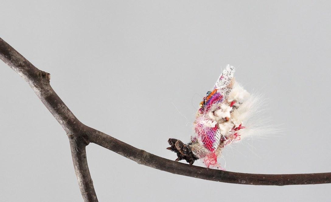 aki-inomata-6.jpg