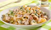 Macarrão com Frango   7 Receitas deliciosas para um Almoço ou Jantar Rápido e Fácil