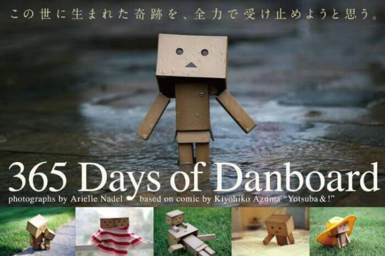 Libro '365 Days of Danbo' de Arielle Nadel
