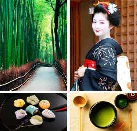 Kioto está poblado de lugares mágicos sobre los que se hablará en las conferencias, como Harashiyama (en la imagen) o el templo de Kinkakuji (en la cabecera en esta entrada). Kioto también es conocida por ser uno de los lugares de Japón donde se conserva la tradición de las Geishas y la realización y aplicación de su maquillaje, sobre lo que aprenderemos en una de las conferencias impartidas.
