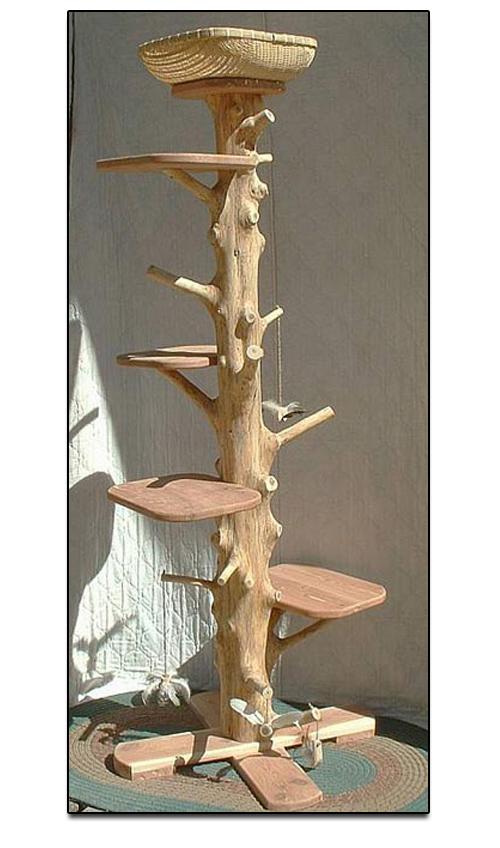 coolkittycondos 6ft tall cedar