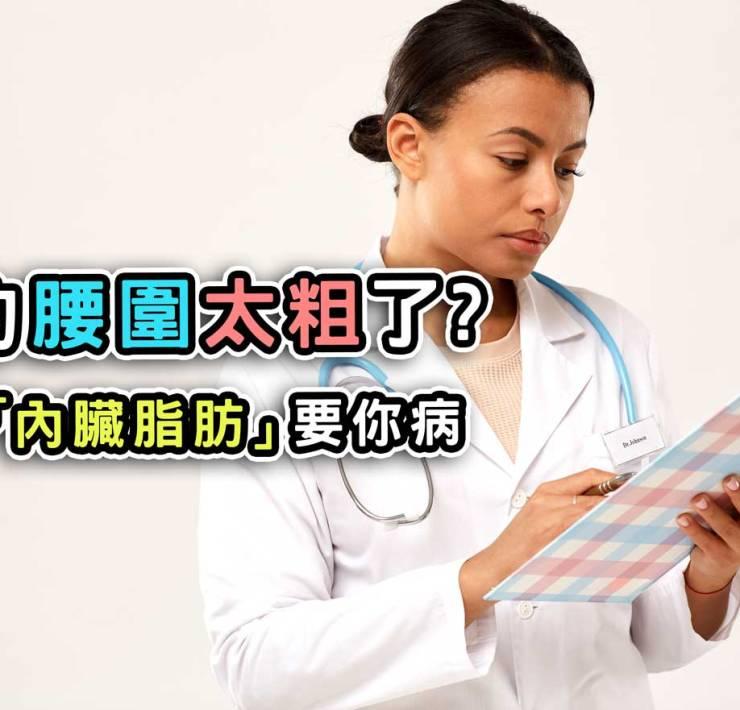 你的腰圍太粗了?小心「內臟脂肪」要你病