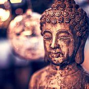 新靈魂觀: 有關業力、直覺、心和光
