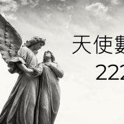 當您開始在各處看到天使數字222時,這就是您感到高興的原因,因為這是一個非常好的信號。這個天使號碼是您的守護天使宣布的事情,即將在您的生活中發生。