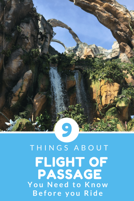 9 Things About Pandora Flight of Passage You Need to Know