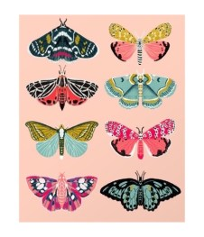 lepidoptery-no-1-by-andrea-lauren-prints