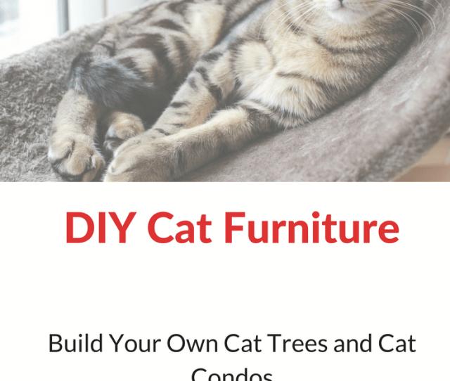 Best Cat Tree Plans For Building Diy Cat Furniture