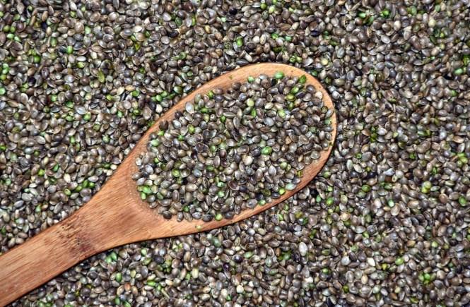 hemp seeds for health and skin