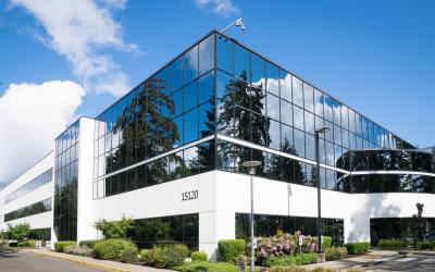 5 Benefits of Decorative Window Films for Your Property