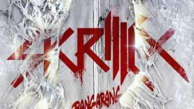 Photo of Skrillex – Bangarang (iTunes Plus) (2011)