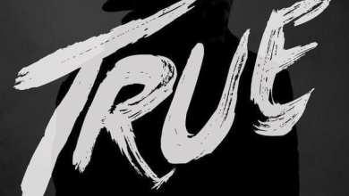 Photo of Avicii – True (iTunes Plus) (2013)