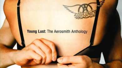 Photo of Aerosmith – Young Lust: The Aerosmith Anthology (iTunes Plus) (2001)