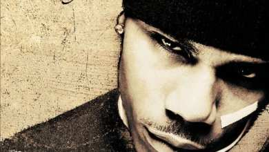 Photo of Nelly – Nellyville (iTunes Plus) (2002)