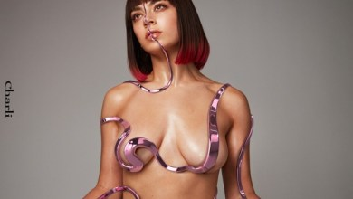 Photo of Charli XCX – Charli (iTunes Plus) (2019)