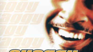 Photo of Shaggy – Hot Shot (iTunes Plus) (2000)