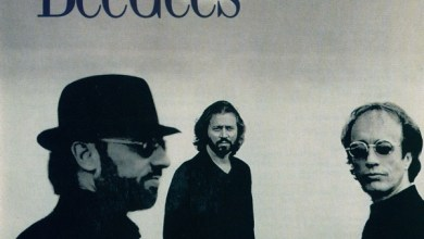 Photo of Bee Gees – Still Waters (iTunes Plus) (1997)
