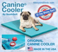 Canine Cooler Cooling Dog Bed by SoothSoft