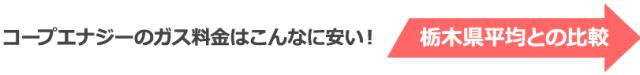 栃木県内比較